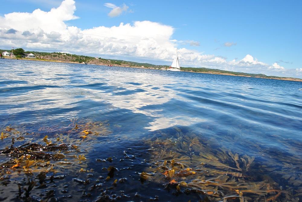 Am kleinen Strandbad in Lyngör
