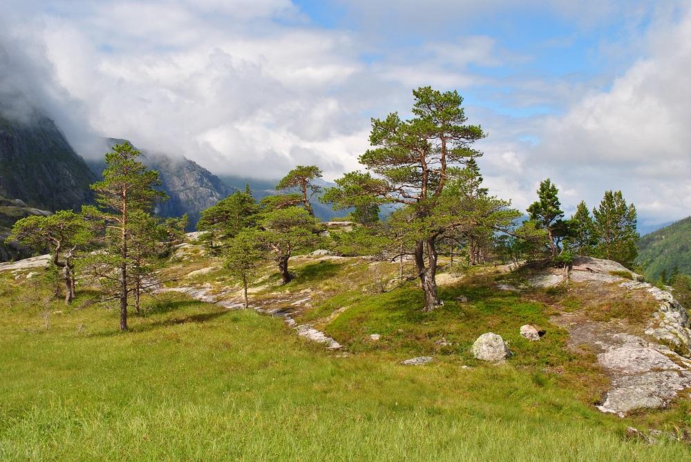Das Plateau beim dritten Wasserfall