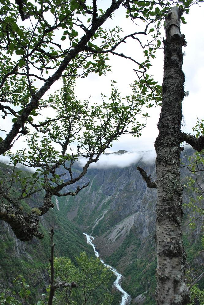 Der Fluss Veig im Hjölmdalen