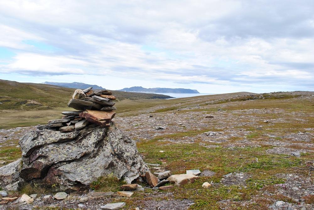 Tundra auf dem Weg zum Nordkap
