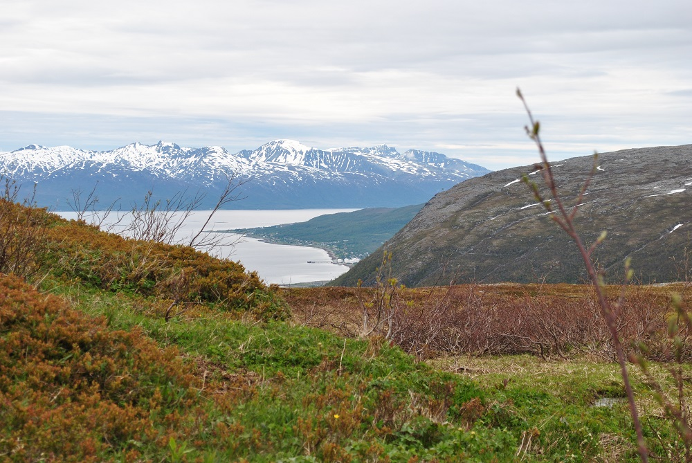 Die Berge rund um Tromsö