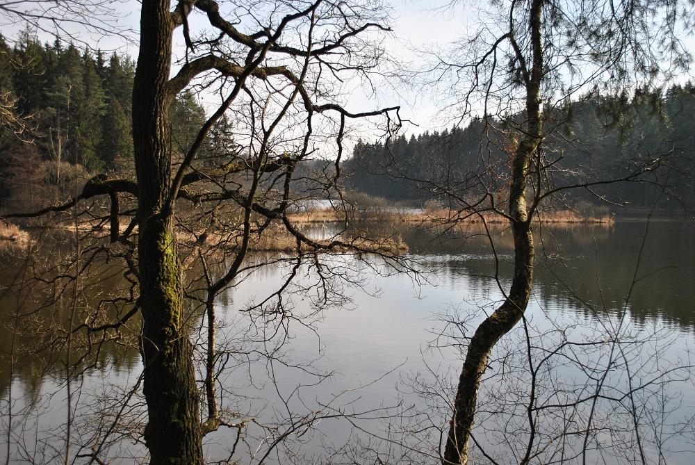 Am Herrensee in Litschau